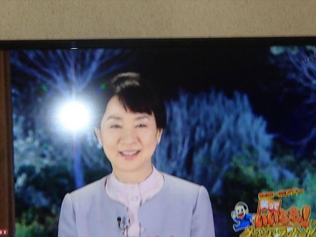 Sayuri1