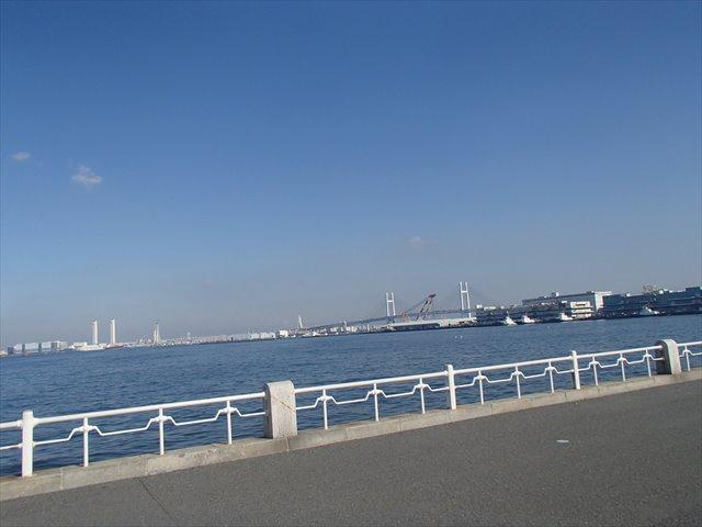 Yokohamay1_r