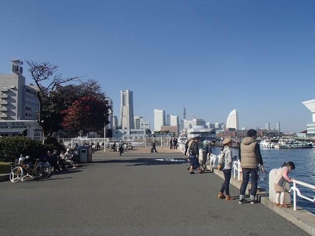 Yokohamayakouenn1_r