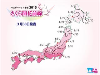 Sakura_front_600x450_r